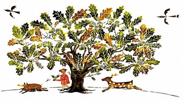 Erdőismereti foglalkozás